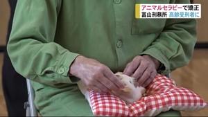 動物との触れ合いで心のケア 再犯防止を