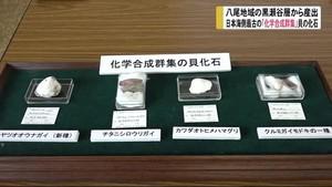 日本海側最古の化学合成貝化石群集
