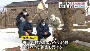 新田知事が大雪被害の農業施設を視察 「復旧に向けた支援を検討」